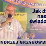 Jak działa nasza świadomość – Andrzej Grzybowski